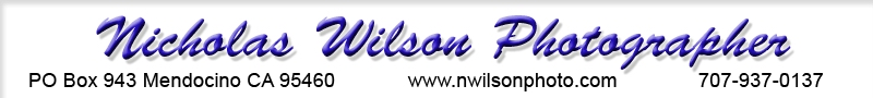 Nicholas Wilson Photo web banner
